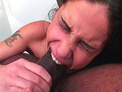 Beauty sucking immense boner