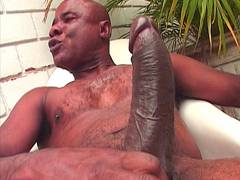 Big cock screwes blonde